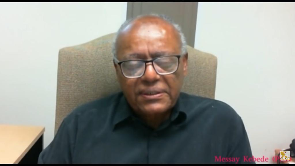 """An Ethiopian Philosopher Faults Abiy Ahmed for """"Inflexibility"""" – Puntland Post"""